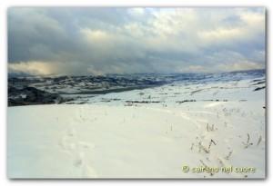 inverno 201600003